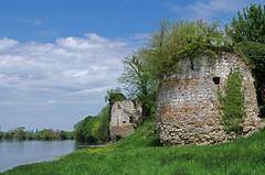 Noutre (Indre-et-Loire) (sybarite48) Tags: france tower castle torre tour toren castelo schloss turm castello  castillo kasteel   kule zamek     indreetloire chteaufort wiea   noutre  birkale