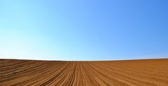 DSCF2979b (gib_bes) Tags: lines work horizon bluesky soil farmer luxembourg endless steinfort
