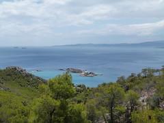 (Anna Voulgari) Tags: summer green greek islands greece pines attiki salamina