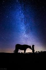 Friends (Explore 13 Jun'16) (E.J.A. Photo) Tags: selfie milchstrase milkyway sternenhimmel sterne stars pferd horse freunde selbstportrt