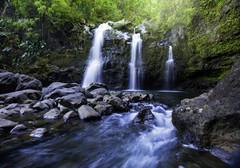 Divinity (MicahRoemmling) Tags: longexposure water forest landscape hawaii waterfall rocks maui hana