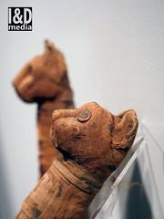 mcats9 (Internet & Digital) Tags: mummy mummified cats ibis victorian mummifiedcats thoth hawk sacrifice ritual ancient ancientegypt offerings god isis horus osirus egypt giftstothegods exhibition glasgow kelvingrovemuseum animalmummycatmummygiftstothegodsexhibitionglasgowkelvingrovemuseummummifiedcatsancientegyptegyptcroccodilecatheadibisvictoriansacrificeritualancientofferingsgodc21troyidmedia