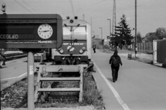 (janosh_) Tags: station pentax kodak railway da 1855 smc excel tmax100 peron mz50 foma vonat plyaudvar vast pentaxart