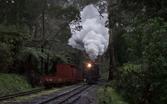 Cold start (michaelgreenhill) Tags: smoke au australia trains victoria steam pbr headlight belgrave climax puffingbilly 1694 lightengine commissionersspecial