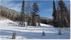 Alpas 2 (HJsfoto) Tags: winter nature landscape vinter natur landskap potofgold beautifulphoto alpas mywinners