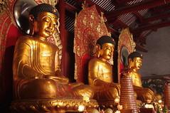 San Bao Fo @ Dafo Temple, Guangzhou (Ridoneko) Tags: buddha buddhism amitabha sakyamuni bhaisajyaguru dafotemple sanbaofo