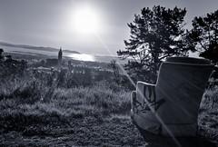 Best Seat in the House (Joe Parks) Tags: sanfrancisco canon prime berkeley hills campanile goldengatebridge eastbay berkeleyhills sunbeams ucberkeley sathertower universityofcalifornia 2818 tightwadhill parksjd