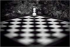 Chess (Alex_v1.1) Tags: blackandwhite bw nikon dof chess checkers chesspiece pawn chessboard topaz shallowdepthoffield 50mmf18 d90 dimex flickrchallengegroup flickrchallengewinner thepinnaclehof tphofweek167