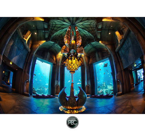 Lost Chambers aquarium Atlantis the Palm - Dubai