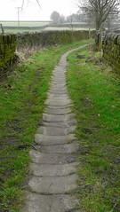 Stone Causey Path (grahamramsden52) Tags: stone path walkers calderdale mankinholes