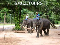 smiletours 4 (highlight of vietnam) Tags: specialtours smiletours deaftours deaftoursvietnam specialtoursvietnam