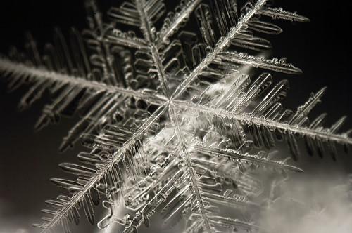 hópehely /snowflake/ by bkaree1, on Flickr