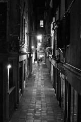 Venice 3636c