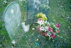 il perdono (Lorenzo Serafini Boni) Tags: from leica film graveyard exposure colore kodak double scan negative r 400 fiori birra negativo canoscan canna droga cimitero esposizione r8 leitz pelicola spinello doppia 9000f