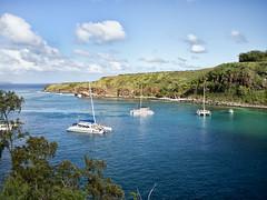 Honolua Bay (mochiland) Tags: hawaii olympus maui snorkeling zuiko ep3 17mm honolua mochiland