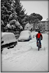 Daredevil athletes (Usc (OFF and OFF)) Tags: trees winter friends light red italy white snow tree green me nature bike alberi landscape photo nikon europe country perspective arbres neve arvore marche jesi eugenio coppari yourcountry paesaggimarchigiani mygearandme ringexcellence usc