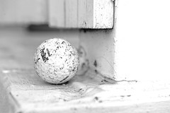 MISPLACED (DESPITE STRAIGHT LINES) Tags: wood canada abstract ball golf bc random decay sidney golfball demise sidneybc gardennikon d700 ilobsterit