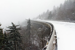 A Color Shot of a Monochrome Day (snapdragginphoto) Tags: snow day northcarolina linville unc blueridgeparkway blowingrock hughmorton linncoveviaduct ricochetrabbit highway221 regionwide univerisityofnorthcarolina