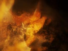 Wenn Bach Bienen gezchtet htte ~ If Bach would have kept Bees -- Beehive, Naturhistorisches Museum Wien (hedbavny) Tags: vienna wien shadow music orange museum austria sterreich natur naturalhistory bach gelb musik naturalhistorymuseum schatten beehive baum museumofnaturalhistory nhm vitrine netz gitter naturhistorischesmuseum draht honig kunstlicht wachs johannsebastianbach exponat bienenstock arvoprt maschendraht naturhistorischesmuseumwien geflecht masche prt unbewohnt bienenzucht zchten ausgehhlt bienenwaben ausstellungsstck drahtgitter paert honiggelb museumofnaturalhistoryvienna naturhistorischesmuseumderstadtwien arvopaert kamerabienenstock wennbachbienengezchtethtte