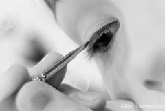 Improving the creation of the nature (Mikko Vuorinen) Tags: bw woman eye girl closeup painting blackwhite soft lashes fingers makeup brush mikko bkoeh vuorinen