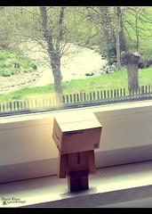 Day 103 - I want out (Shaid || Khan) Tags: window japan canon project germany toy toys photography photo amazon foto fenster manga picture pic figure carton 365 figurine bild digitalphoto figur projekt figuren yotsuba danbo spielfigur 600d project365 revoltech danboard