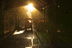 Speaketh in Visual Allegory (David Mor) Tags: morning light alley bokeh jerusalem divine metaphor sunrays oldcity symbolic quran sura jerusaln ayat lalumire  signoflight   suratalnur circulareyes  suradoalcoro soerahetlicht