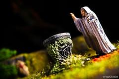Portraits of Lorien: Galadriel (Snaptivate) Tags: mirror miniature games lord ring rings workshop hobbit fellowship galadriel lorien lothlorien