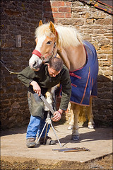 Farrier (Lee Beel) Tags: horse canon flash pony horseshoe blacksmith stable speedlight strobe stables manfrotto farrier beel strobist leebeel