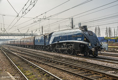 60007 Sir Nigel Gresley - 1Z26  London Kings Cross to York - Cathedral Express , Doncaster , 29-3-2014 (Bri Hall) Tags: york steam kingscross sir a4 nigel steamtrain doncaster gresley sirnigelgresley cathedralexpress