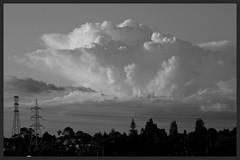 Stormclouds-Rosebank Peninsular (Zelda Wynn) Tags: bw nature weather clouds blackwhite auckland cumulus artgalleryofnsw pylons cloudscape anvil troposphere nationalgrid inspiredbyalfredstieglitz rosebankpeninsular