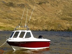 Salmoferox (salmoferox) Tags: fish scotland highland warrior loch trout pike predator fishingboat cr lure pikefishing ferox trolling catchandrelease catchrelease lurefishing feroxtrout feroxfishing warrior165 trollingforferoxtrout trollingloch warriorboats