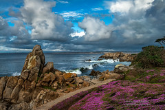 For Lovers Only (Darvin Atkeson) Tags: ocean california park seascape storm color beach landscape aquarium monterey surf village pacific montereybay wave coastal carmel coastline pacificgrove loverspoint flowes darvin atkeson darv liquidmoonlightcom lynneal