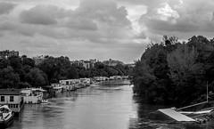 IMG_0422 (Nikan Likan) Tags: street sky white black paris field vintage river lens landscape photography 50mm prime boat cityscape mount german manual depth xenon schneider retina | cloudtree 2016 f19 dkl kreuznarch