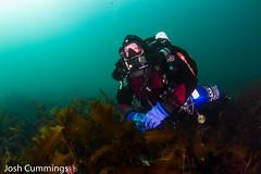 IMG_8992 (Josh.Cummings) Tags: ocean divers dive newengland diving ann cape drysuit rockport rebreather ccr cummings revo coldwater rockportma nitrox joshcummings joshuacummings nategarrett joshcummingsunderwater newenglanduwphotographywater capeanndivers jrcummings