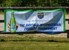 BICC International Tournament 2016-5438.jpg (Gary Lloyd-Rees) Tags: croquet bicc
