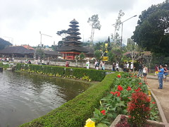20160318_111719 (kiaksar2004) Tags: trees bali lake tree indonesia landscape island temple hindu bratan ulundanu