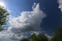 Clouds I (Pascal Volk) Tags: wideangle wa ww 16mm brandenburg naturepark naturpark superwideangle sww uwa weitwinkel swa ultrawideangle havelland uww schutzgebiet protectedarea ultraweitwinkel superweitwinkel canonef1635mmf4lisusm canoneos6d glpe havelaue westhavelland