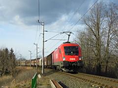 BB 1116 109 (boti_marton) Tags: train lumix europa hungary transport siemens cargo panasonic taurus bb dmc sopron freighttrain magyarorszg 1116 eurosprinter lz20 es64u2
