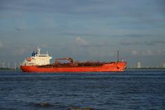 Chem Amsterdam (DST_7104) (larry_antwerp) Tags: ship vessel schelde tanker  schip          chemamsterdam        9640138