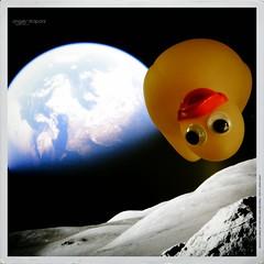 Houston I've a problem (Angelo Trapani) Tags: moon duck space papero storia ducktales avventura lunarmission