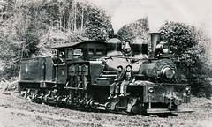 Lima 2130 (David Clippinger) Tags: train steam shay locomotive steamengine lumber steamlocomotive 2130 denkmann srwood lima2130 shay2130 kinglumberindustries15 denkmannlumberco15 denkmannlumberco2 mcilwainkendalllumberco2 croftlumberco2 pearlrivervalleylumberco birminghamraillocomotiveco1609