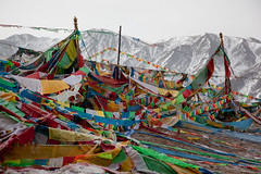 RURAL CHINA: The Next Ten Years (D J Clark) Tags: china amdo prayerflags    qinghai tibetanbuddhism  chn   tibetanculture  hainantibetanautonomousprefecture               duowa