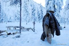 DSC_0437 (bolotbootur) Tags: travel winter snow cold weather reindeer russia deer siberia sledding fareast nomads sledge yakutia evens sakharepublic oymyakon ojmjakon yakutiya