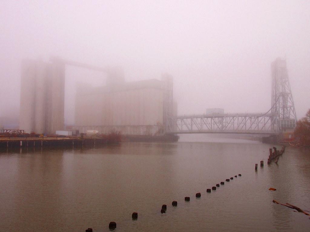 fog36