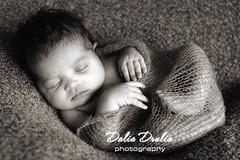Manhattan newborn photographer (Dalia Drulia) Tags: kids children babies photographer manhattan newborn sigma50mm inafant druliaphotography canon5dmark2 queensnewbornphotographer nynewbornphotographer newbornphotographynyc druliaphoto newbornny
