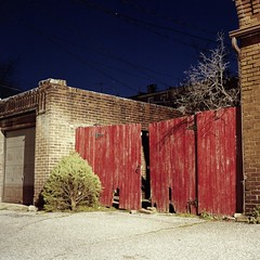 (Tim Castlen) Tags: longexposure january christmastree baltimore 2012 yashicamat124g charlesvillage kodakportra160