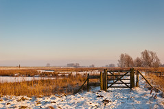 HFF (RuudMorijn) Tags: park wood blue winter light sunset sky white holiday snow cold holland tree ice nature netherlands beautiful beauty dutch field grass weather rural fence season landscape outside outdoors countryside frozen wooden scenery europe frost quiet view natural outdoor snowy background horizon country sneeuw rustic seasonal scenic peaceful nobody frosty scene explore freeze environment lonely wintertime picturesque tranquil winters landschap hek houten kou noordbrabant winterlandschap abigfave dintelsegorzendeheen