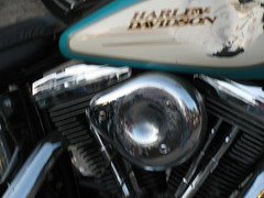 IMG_2095 (tuffcreek) Tags: sun moon hot cold wet rain wind dry harley harleydavidson babes motorcycle daytona touring ironhorse forida silverfox ormond bikeweek bikeengine bikerbabes davidallancoe tuffcreek