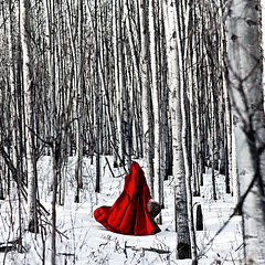 (sweethardt) Tags: trees winter red portrait selfportrait snow self woods basket riding cape hood
