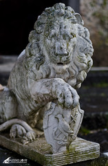 The Lion of Admiral Lord Nelson, Bronte [EXPLORE] (alexbravewolf) Tags: italy sculpture white black castle beautiful field stone wow garden emblem 50mm one photo fantastic nikon paint pretty italia image very good expression background gorgeous awesome group lion picture award superior nelson super lord best explore most creation winner stunning excellent sicily plus much network contact draw rank incredible castello breathtaking multi sicilia bronte exciting phenomenal admirallordnelson flickr500 dukedom d7000 alexbravewolf